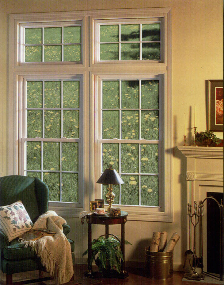 Silver Line Series 3000 3900 New Construction Double Hung Windows